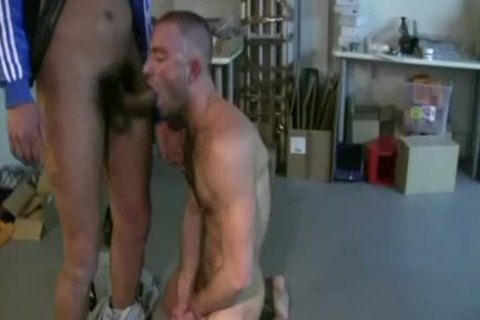 Compilation hairy cocks